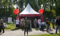 MFD Healthcare group on 20 May will take part in the «Festival of Pardaugava»