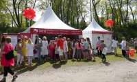MFD Healthcare group on 19 May will take part in the «Festival of Pardaugava»